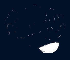 Biospecimen Brain Outline Icon
