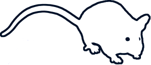 Mouse Outline - Black - PNG